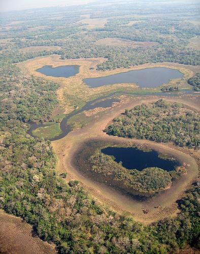 el-pantanal.jpg