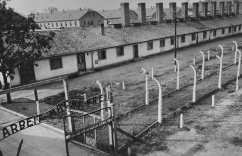 Campos de Auschwitz