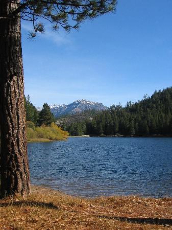 Parque Nacional de Sequoia