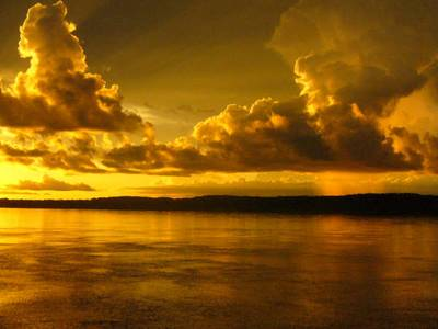 amazonia-1.jpg